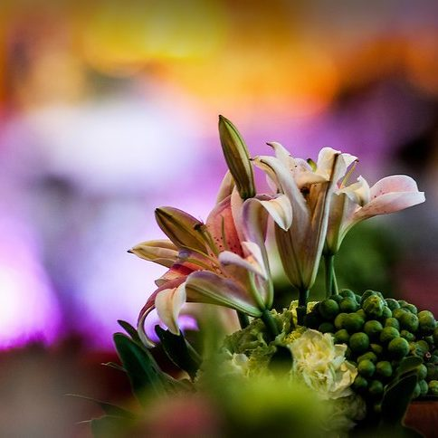 v4-728px-Buy-Flowers-for-a-Funeral-Step-1